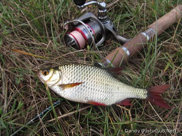 Рыбалка спиннингом на мормышку и выбор снасти