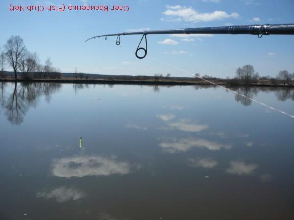 chaser pontoon 21 crs712mlxf