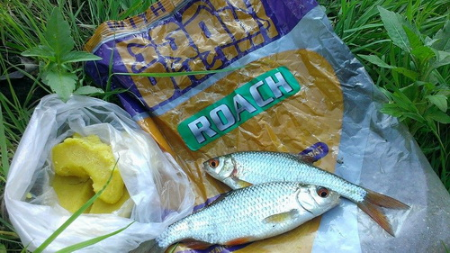 прикормка на белую рыбу фидер
