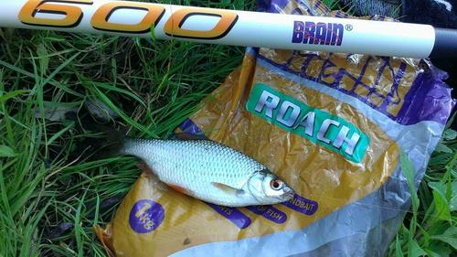 рыбалка на десне удельные уты