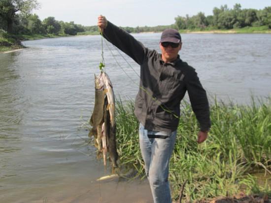 любители рыбалки на дону