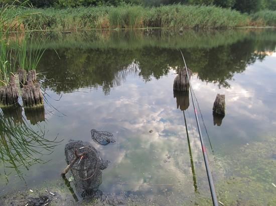 рыбалка на плотву весной на малых реках