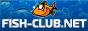 отчёты о рыбалке, обзоры рыболовных снастей, логи, форум, сообщество рыбаков Fisg-Club.Net