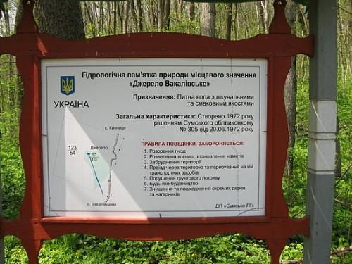 родник в лесу возле села Вакловщина